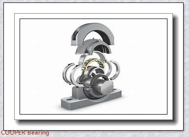 COOPER BEARING 01BCPS115GR Bearings