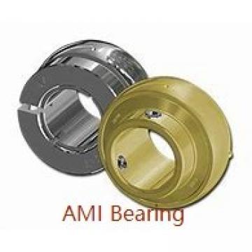 AMI MUCHPL206-19RFCB  Hanger Unit Bearings