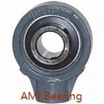AMI MUCHPL206-20RFCEB  Hanger Unit Bearings