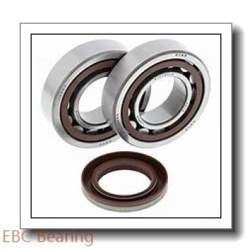 EBC 623 2RS  Single Row Ball Bearings
