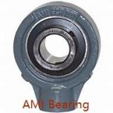 AMI UKFX18+H2318  Flange Block Bearings