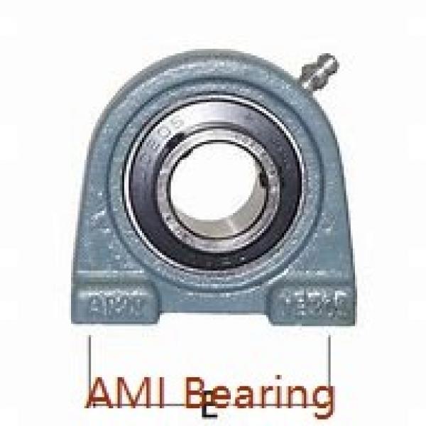 AMI UFL004C  Flange Block Bearings #1 image