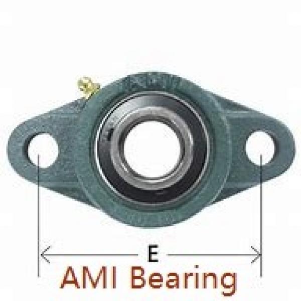 AMI UFL006CE  Flange Block Bearings #1 image