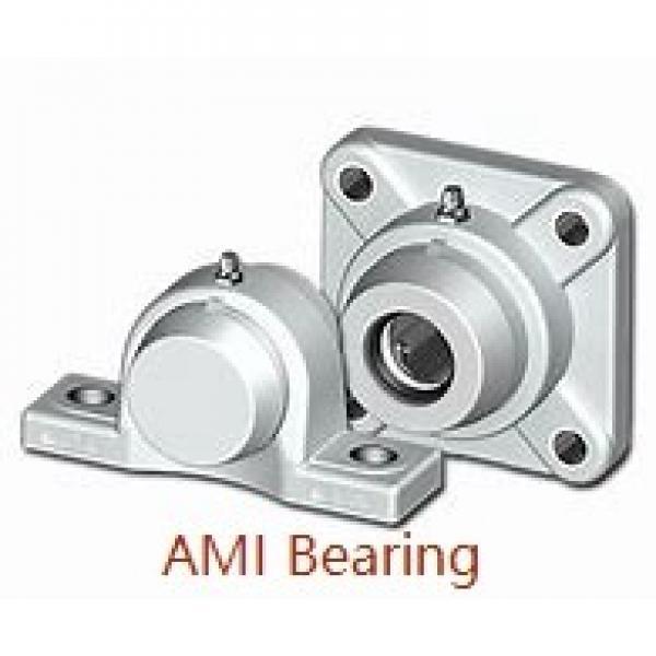 AMI UELX204B  Flange Block Bearings #1 image