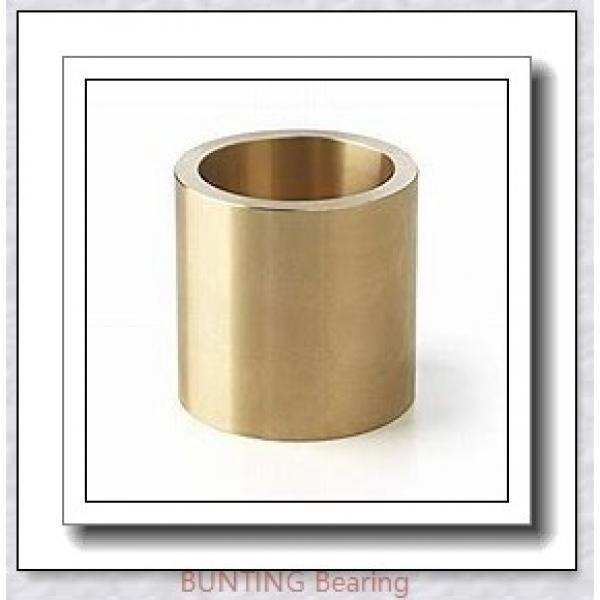 BUNTING BEARINGS AA121312 Bearings #1 image