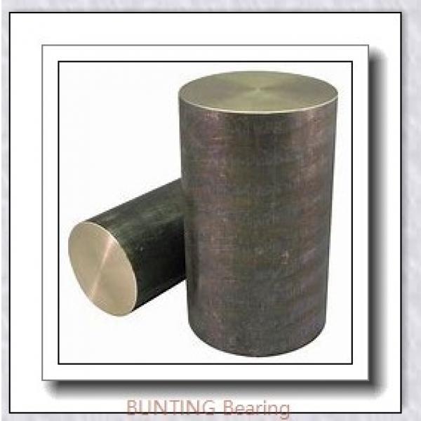 BUNTING BEARINGS CB202726  Plain Bearings #1 image