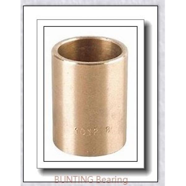BUNTING BEARINGS CB202528 Bearings #1 image